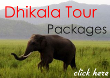 Dhikala-tour-package